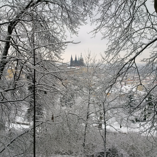 Prague Castle after Snowstorm